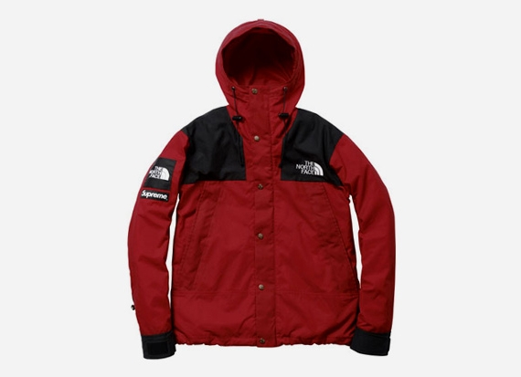 Supreme x THE NORTH FACE 2010 Fall:Winter Collection.jpg